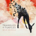 Wild Animals — Trampled by Turtles Listen-to-This