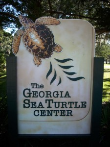 Turtle-Sign