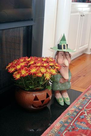 Den-Witch-&-Planter