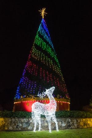 Reindeer-&-Tree